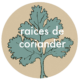 Raices de coriander